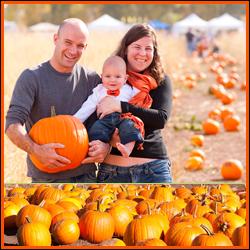 Denver Botanic Gardens Pumpkin Festival