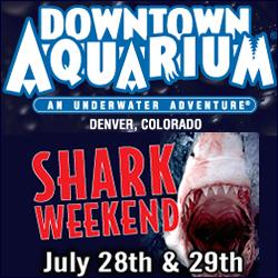 Shark Weekend Denver