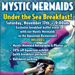 Under the Sea Breakfast Denver